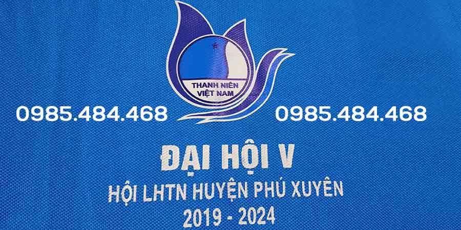 Lien hiep Thanh Nien Phu Xuyen e1600400999196